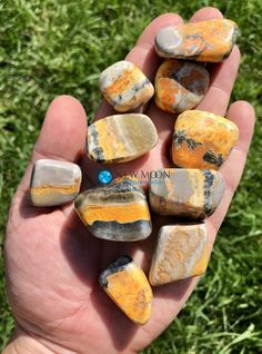 Bumble Bee Jasper Tumbled Stone Tumbled Stone Jasper Stone, Tumbled Stones, Minerals And Gemstones, Enabling, Semi Precious Gemstones, Plexus Products, Chakras, Stones And Crystals, Confidence