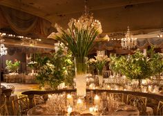 New York City Event Planner Amy Katz
