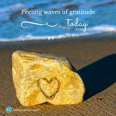 Feeling waves of gratitude today...you too?