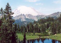 Washington state - Mt. Rainier | Flickr - Photo Sharing!