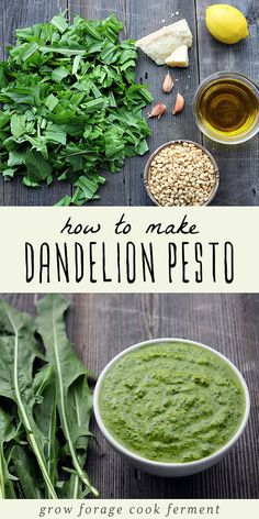 Go foraging for dandelion greens and make this nutritious dandelion pesto! Recipe is from the Alchemy of Herbs book by Rosalee de la Forêt. Dandelion Pesto Recipe, Dandelion Recipes, Vegetarian Recipes, Cooking Recipes, Healthy Recipes, Herb Recipes, Cooking Games, Vegan Recetas, Healthy Snacks
