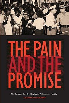 The Pain and the Promise: The Struggle for Civil Rights i...