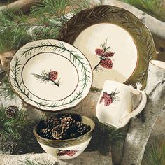 Pinecone Stoneware Dinnerware Set - 16  love this set to replace our every day set that is missing pieces