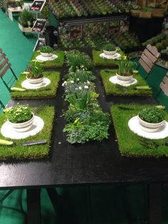Fresh Garden Table Setting Use grass as floor because therapeutic