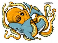 Shark and the Octopus