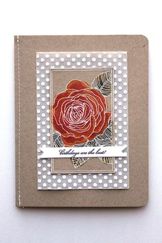 Birthdays Are The Best Card by Heather Nichols for Papertrey Ink (April 2014)