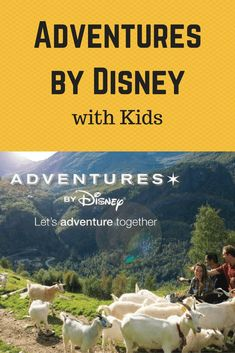 We did an Adventures by Disney with our two kids and they loved it. Here is what we did and our Adventures by Disney Best Vacation Spots, Disney World Vacation, Disney Vacations, Road Trip With Kids, Travel With Kids, Family Travel, California Vacation, Disney California Adventure, All Family