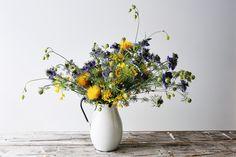 emily thompson floral design - Nigella Allium Yellow thistle Centaurea Macrocephala Seleme