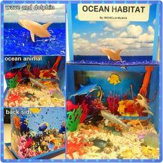 My Ocean habitat projects