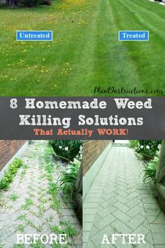 Getting rid of weeds in your garden can be a total pain, but these 8 homemade weed killing solutions may just help you eliminate weeds once and for all! These homemade weed killing solutions are… Gardening Supplies, Diy Gardening, Container Gardening, Organic Gardening, Vegetable Gardening, Gardening Shoes, Apartment Gardening, Garden Yard Ideas, Lawn And Garden