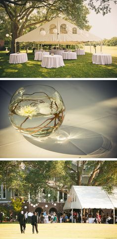 rent a bubble bowl vase and use cury willow and a floating candle