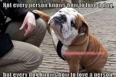 Not every person knows how to love a dog, but every dog knows how to love a person.