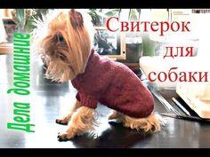 """Как связать свитер для собаки своими руками.Одежда на собак на канале""""Де..."""