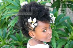 Frohawk with Side Flat Coils and Cornrowed Border | Chocolate Hair / Vanilla Care
