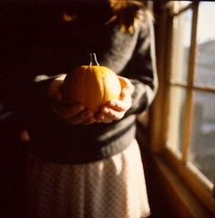 elegant-autumn:  cinderellafall:  Magical fall vibes  autumn...