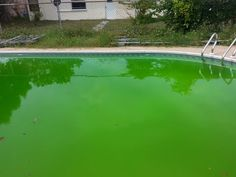 How to Get Rid of Green Algae in swimming Pools Water