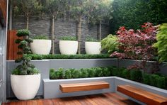 Court Yard Garden in Holborn, London designed and built by Maria Ornberg at Greenlinesdesign.co.uk