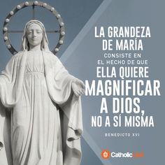 Biblioteca de Catholic-Link - La grandeza de María Benedicto XVI