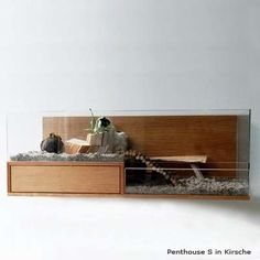luxury rodent homes