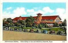 Kingsville Texas TX 1937 Texas College of Arts and Industries Vintage Postcard - Moodys Vintage Postcards - 1