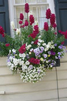 Awesome Plant Combinations For Window Boxes 40