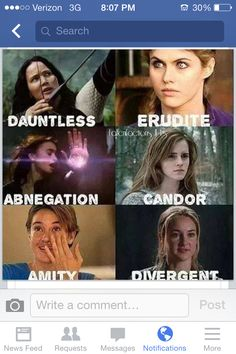 Hunger Games, Percy Jackson, Harry Potter, Fault In Our Stars, and Divergent. Who's Amity?