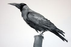 Crow (Original watercolor) - OriginalArtOnly on Etsy