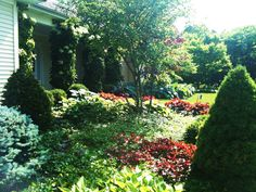 One of our many landscapes - completely redone by Myers Nursery