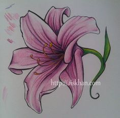 Free download Lily Flower Tattoo Drawing ' tattoo design did