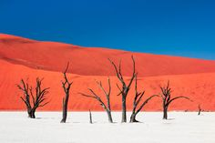 """Island of Silence and Heat"" PHOTOGRAPH BY CARSTEN KRÜGER, NATIONAL GEOGRAPHIC YOUR SHOTLaunch Gallery Your Shot member Carsten Krüger submitted this otherworldly photo of Namibia's Dead Vlei: withered trees anchored in a white-clay pan, standing in striking contrast to an intensely colored, towering sand dune. The trees have been there for hundreds of years, reminders of when river waters cooled and hydrated this now scorched earth. Krüger writes, ""[It was] a surreal island of silence and…"