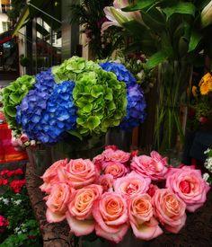 Paris flower market. ˛ • ° ˛˚˛ *•。★ ˚ ˚*