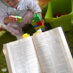Bible reading (Daniel)