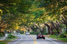 Gulf Shore Boulevard