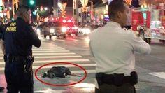 ABD polisi Hollywood'un göbeğinde bir şüpheliyi vurdu