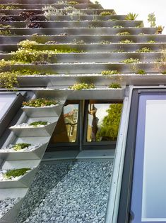 A London Home Featuring a Unique Terraced Green Roof - There are also glass and mirror elements in the roof of the house. This adds beauty to the roof garden while it deflects light and might even illuminate the interior as well. Diy Pergola, Retractable Pergola, Pergola Curtains, Cheap Pergola, Pergola Shade, Pergola Plans, Pergola Kits, Pergola Ideas, Green Roof Benefits
