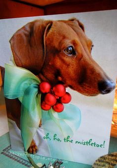Pack of 5 Dachshund Oh Ho the Mistletoe by kalyxcraftopia on Etsy