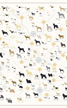 181 Breeds Of Dog On One Awesome Poster. It's enough to make you pet your computer screen! If you were into that or whatever. @Co.Design #dogs #posters