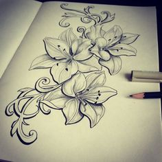 Love these Lilys I want to add them to mine but in color!