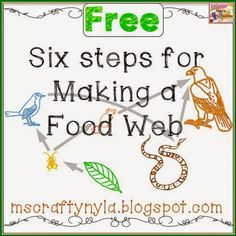 Nyla's Crafty Teaching: How to make a food web - free posters