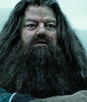 Rubeus Hagrid is still one of the most popular characters from the Harry Potter franchise. Here's what happened to Robbie Coltrane's character. Harry And Ginny, Harry Potter Pin, Harry Potter Universal, Harry Potter Characters, Eight Movie, Hogwarts Professors, Robbie Coltrane, Rubeus Hagrid, Albus Dumbledore