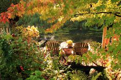Garden seat at the ditch
