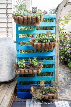 This DIY vertical herb garden is made with a pallet and windows boxes for a fast, easy and inexpensive way to grow herbs in a small space. #fromhousetohome #herbgarden   #gardenstructures #herbs
