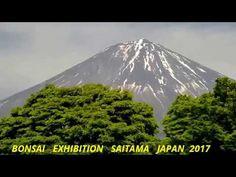 BONSAI   EXHIBITION   SAITAMA   JAPAN  2017