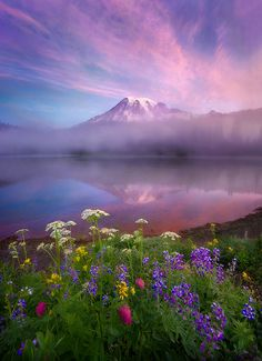 Reflection Lake, Mount Rainier. By:   Marc Adamus