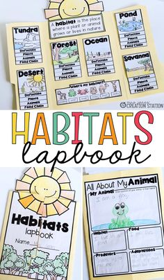 Interactive Lapbooks for the School Year Habitats First Grade Science, Kindergarten Science, Elementary Science, Teaching Science, Science For Kids, Science Activities, Science Projects, Ecosystem Activities, Ecosystems Projects