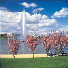 Lake Burley Griffin, Canberra http://www.holidaysforcouples.travel/articles/1353-canberra-calling