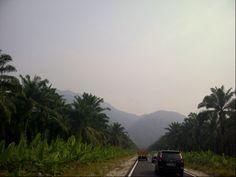 Taman Negara Johor Gunung Ledang  http://youtu.be/r4DoL_F1QRQ?list=UUIECrX0OW50Qa77ZcV9kK4w