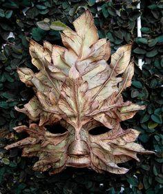leafs.
