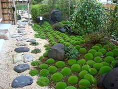 jardin pequeño zen japones