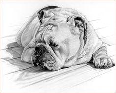 Michele Amatrula (pencil drawing)